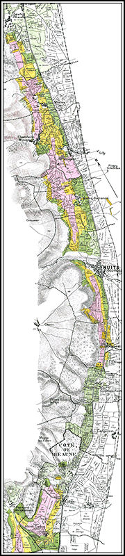 MAP OF THE VINEYARD